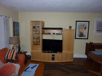 Beautiful TV and Storage Entertainment unit.