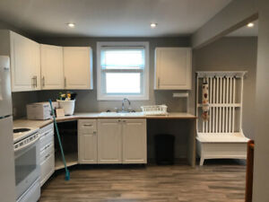 All Inclusive, Fully Furnished, 4-Bedroom Home -2 Month Sublease