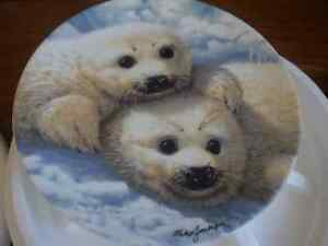 Collector's Dish - Baby Seals Prince George British Columbia image 4