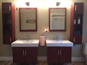 Double Bathroom Vanity Cabinet and Sink Set