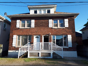 Great Triplex for sale in Niagara falls