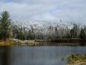 .60 acres avec un petit lac a truite privé