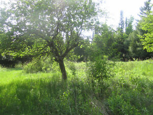 25-100 acres vacant land near water for swimming