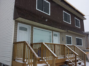 Beautifully Renovated 2 Bedroom Apartment on Bancroft Dr.