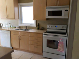 Kitchen Cabinets and Countertops, Dishwasher, Microwave, Stove