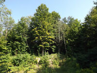 1 Acre Executive Building Lot in Waterfront Subdivision