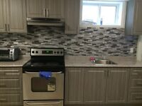 Beautiful one bedroom unit at Lower Level with All Utilities