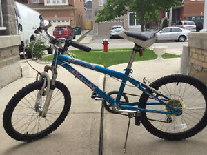 $40 Used Girls gear bike
