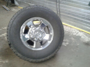 Rims or Tires and Rims