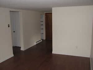 1 Bedroom apt Close to Queens For July 1st