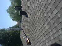 Roofing services everywhere