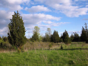 Level Vacant Land for Sale