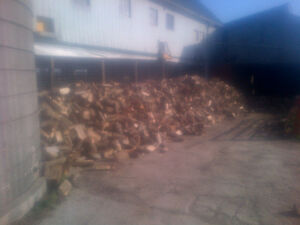 Seasoned Firewood FOR SALE Stratford Kitchener Area image 1