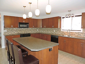 Beautifully Renovated on .44 acre EPIC lake views & Huge kitchen