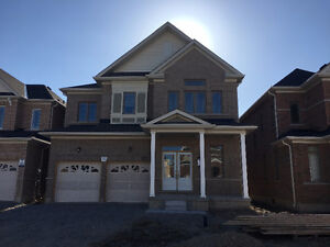 Bradford New House 4Bedrooms for Rent