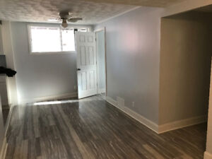 Newly Renovated One Bedroom Apartment