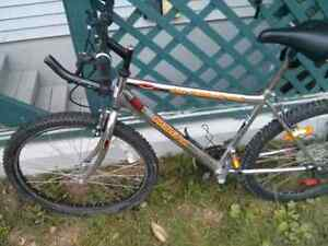 mountain bike in excellent condition 18 speed 80 obo