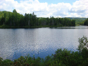 Waterfront Lots (only 2 left).