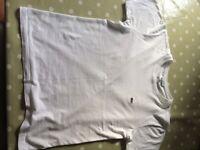 Lacoste boys white t-shirt