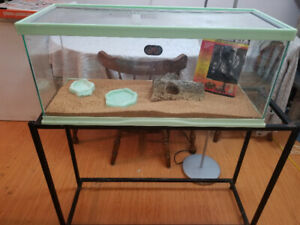 leopard gecko tank and stand 100 OBO need gone asap
