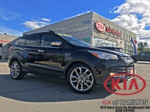 2015 Ford Escape SE FWD | No Accidents | One Owner