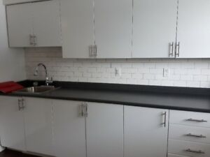 BEAUTIFULLY RENO'D BACHELOR SUITE, NEW KITCHEN, GAS FIREPLACE!