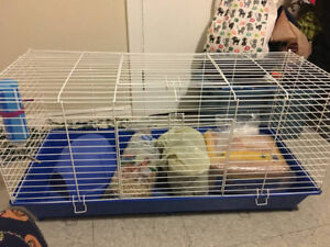 Rodent Cage with months worth of Guinea Pig supplies