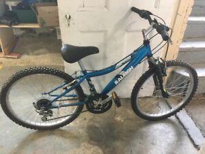 "Raleigh Road Boss 24"" Mountain Bike"