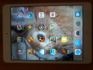 Mint Condition iPad Mini With Case
