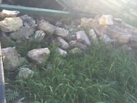 Garden stones/ Rubble free to collector. Rockery water feature etc