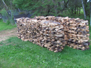 Soft wood camp fire wood 1 cord  $148  picked up