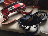 Climbing harness - Petzl and Weaver