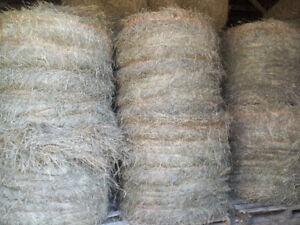 Alfalfa/grass mix round bales