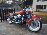 2000 Harley Davidson Softail
