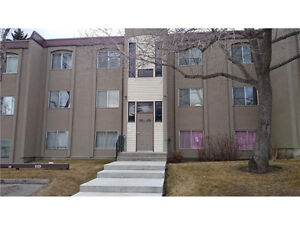 Great Starter Condo for First Time Buyer or Investor