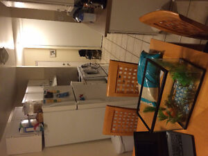 Two Bedroom Apartment - MOVE IN IMMEDIATELY, FIRST MONTH PAID Kitchener / Waterloo Kitchener Area image 7