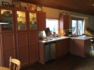 Kitchen Cabinets with 2 granite countertops