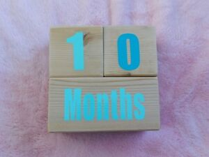 Baby Age Blocks for photo prop