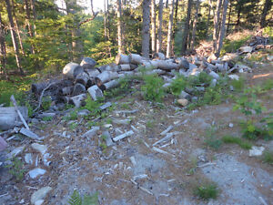 FREE Dry Firewood- Mostly Pine with some Spruce - Pick-up only.