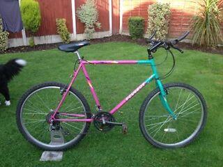 Adults peugeot anaconda mountain bike