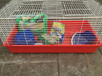 Spotless, large size rabbit cage, eccesories and food (incuded)