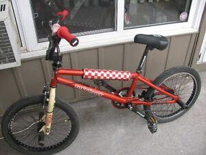 tony hawk bmx in great shape,just got tune up,that costed 100