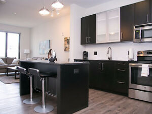 Clean Bright Bachelor in Downtown