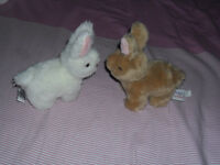 Two Stuff Animal Rabbits