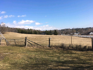 Agent listed- 3 prime acre lots with town amenities in colborne