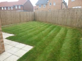 SKB Gardening & Decking