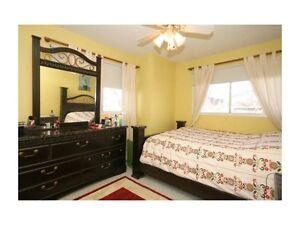 MAIN FLOOR FOR RENT @ 44 Ave NE , WHITEHORN. Only for $950/Month