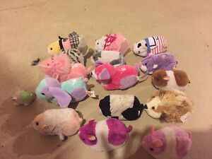 Large assortment of ZuZu pets and accessories for sale St. John's Newfoundland image 1