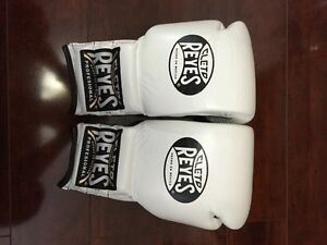 Cleto Reyes 14oz training boxing gloves