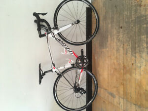 50% off Wilier Team carbon, Ultegra, Was $3899 now $1799